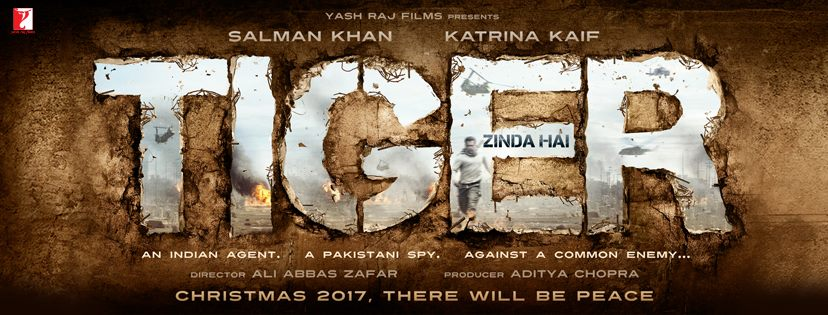Salman in Tiger Zinda Hai