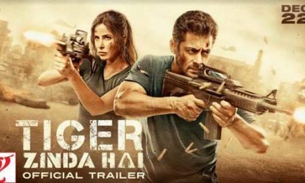 Salman & Katrina's risky stunts