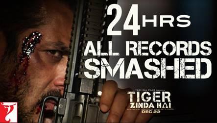Tigersmashesinternet